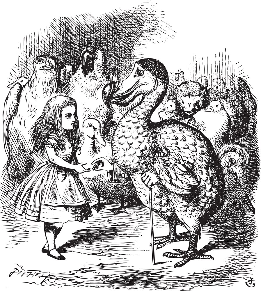 alice-and-the-dodo-john-tenniel