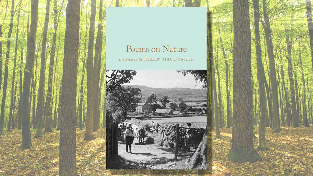 The Best Poems On Nature