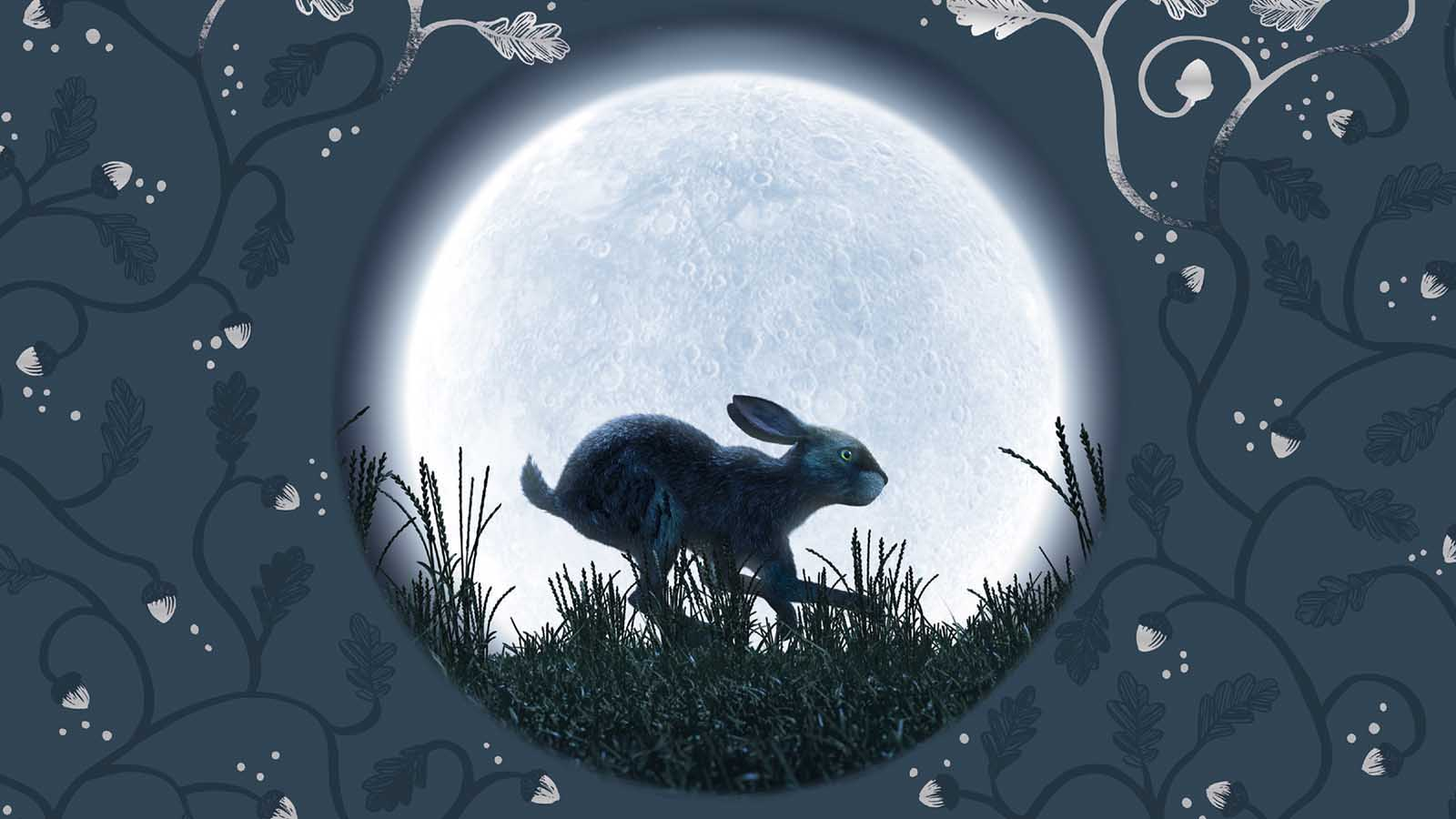 Everything You Need To Know About Watership Down
