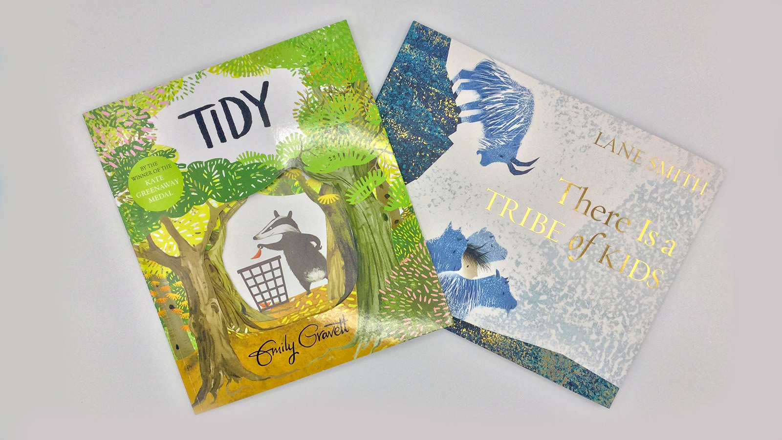 Two Hoots on Kate Greenaway Shortlist