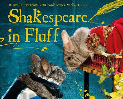 Book cover for Shakespeare in Fluff