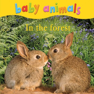 Book cover for Baby Animals: In the Forest