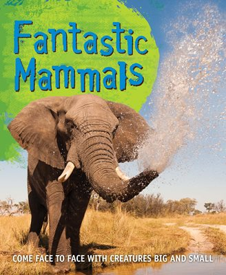 Book cover for Fast Facts! Fantastic Mammals