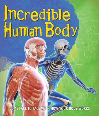 Book cover for Fast Facts! Incredible Human Body