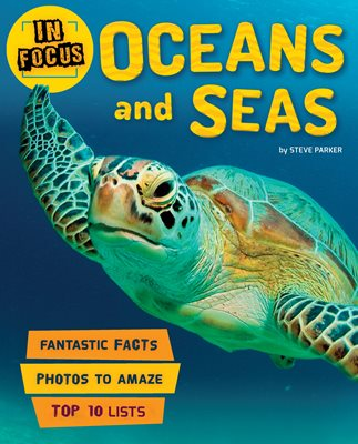 Book cover for In Focus: Oceans and Seas