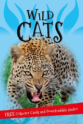 Book cover for It's all about... Wild Cats