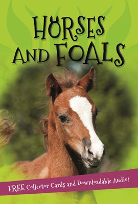 Book cover for It's all about... Horses and Foals