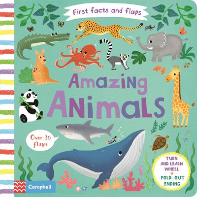 Book cover for Amazing Animals