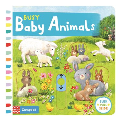 Book cover for Busy Baby Animals