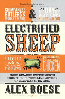 Book cover for Electrified Sheep