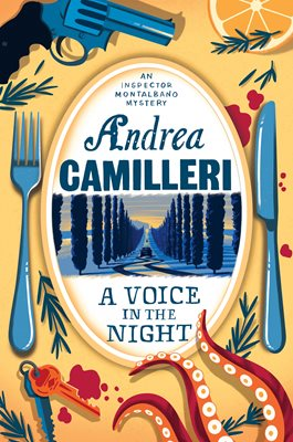 Book cover for A Voice in the Night