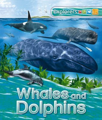 Book cover for Explorers: Whales and Dolphins