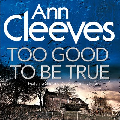 Book cover for Too Good To Be True