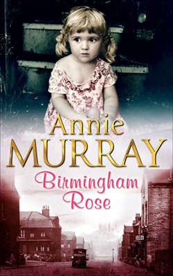 Book cover for Birmingham Rose