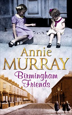 Book cover for Birmingham Friends