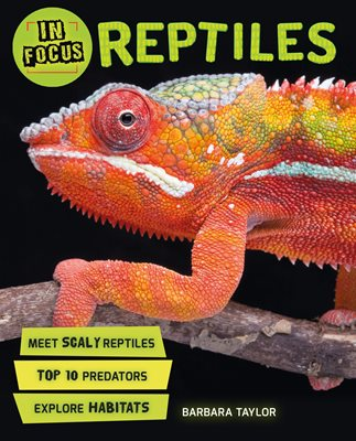 Book cover for In Focus: Reptiles
