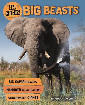 Book cover for In Focus: Big Beasts