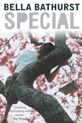 Book cover for Special