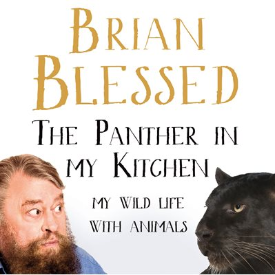 Book cover for The Panther In My Kitchen