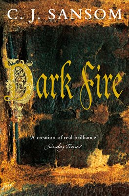 Book cover for Dark Fire
