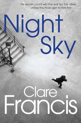 Book cover for Night Sky