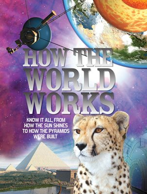 Book cover for How the World Works