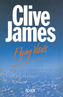 Book cover for Flying Visits