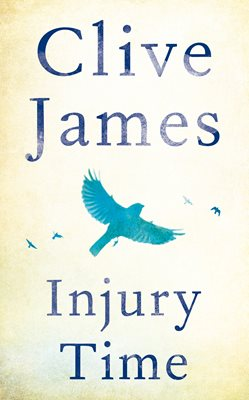 Book cover for Injury Time