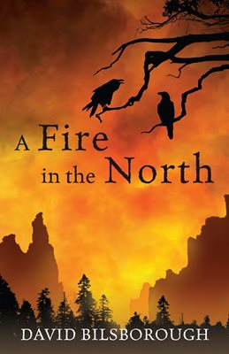 Book cover for A Fire in the North