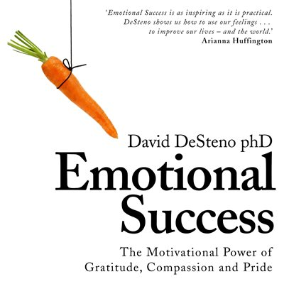 Book cover for Emotional Success