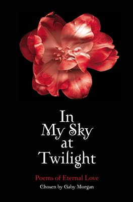 Book cover for In My Sky at Twilight