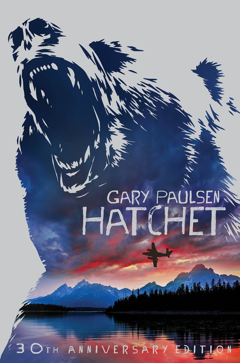the story of a young boy stranded in the canadian wilderness in gary paulsens the hatchet