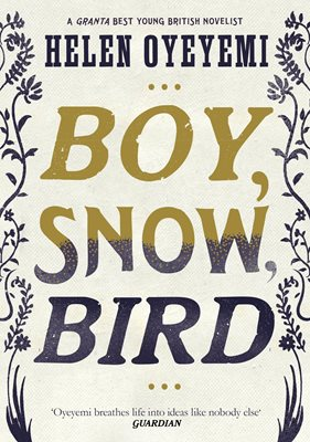 Book cover for Boy, Snow, Bird
