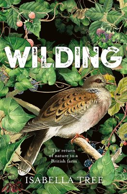 Book cover for Wilding