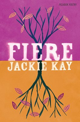 Book cover for Fiere