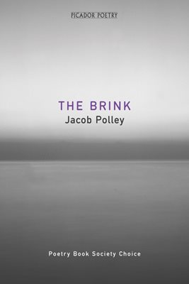 Book cover for The Brink