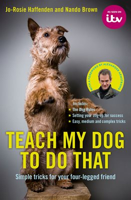 Book cover for Teach My Dog To Do That
