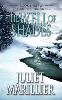 Book cover for The Well of Shades
