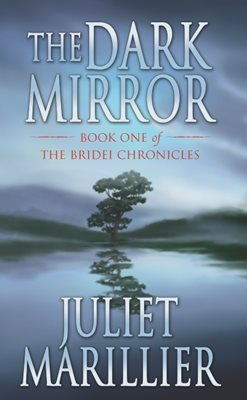 Book cover for The Dark Mirror