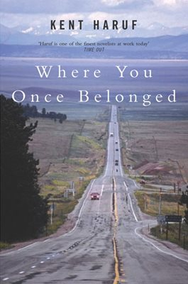 Book cover for Where You Once Belonged