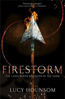 Book cover for Firestorm