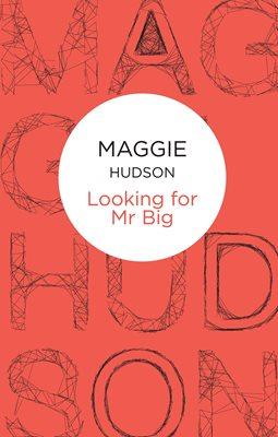 Book cover for Looking for Mr Big