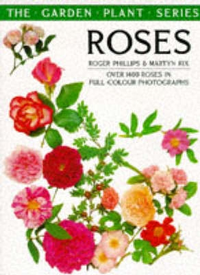 Book cover for Roses