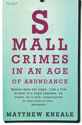 Book cover for Small Crimes in an Age of Abundance