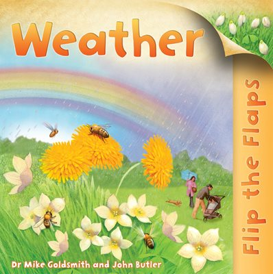 Book cover for Flip the Flaps: Weather