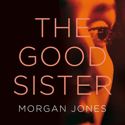 Book cover for The Good Sister
