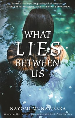 Book cover for What Lies Between Us