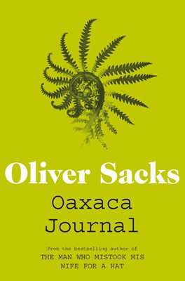Oaxaca Journal