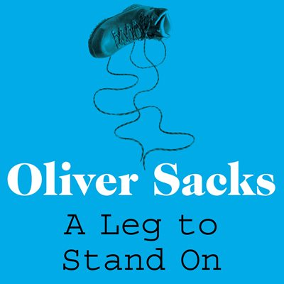 Book cover for A Leg to Stand On