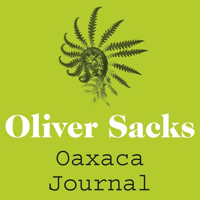 Book cover for Oaxaca Journal